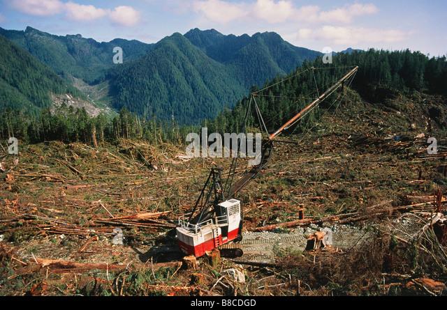 Rainforest Deforestation Stock Photos & Rainforest Deforestation ...