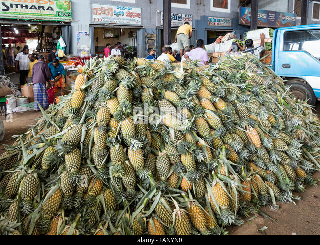 Pineapple Transport Stock Photos & Pineapple Transport ...