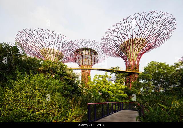 Garden By The Bay East singapore gardensthe bay stock photos & singapore gardens