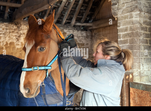 Stable Girls Stock Photos Amp Stable Girls Stock Images Alamy