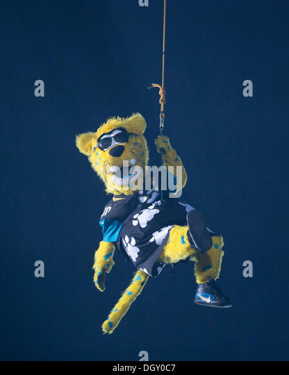 The Mascot For The San Francisco 49ers Stock Photos Amp The