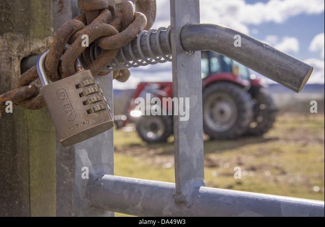 Tractor Chain Lock : Heavy padlock stock photos images