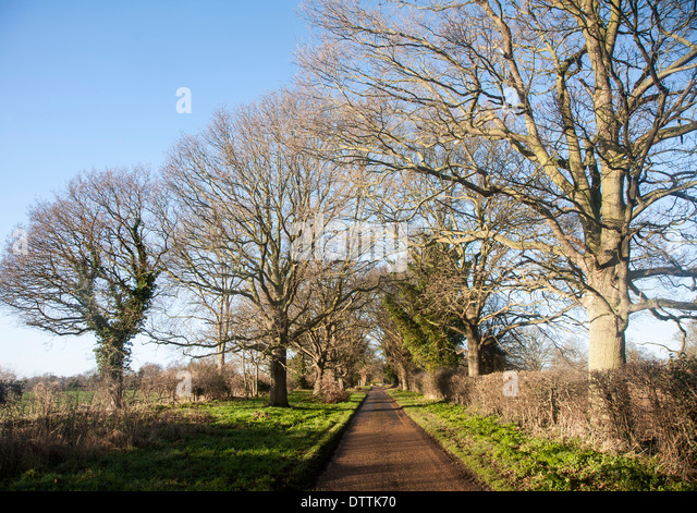 passing stock photos amp passing stock images alamy