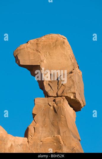 Nefertiti stock photos nefertiti stock images alamy for California chiude l utah
