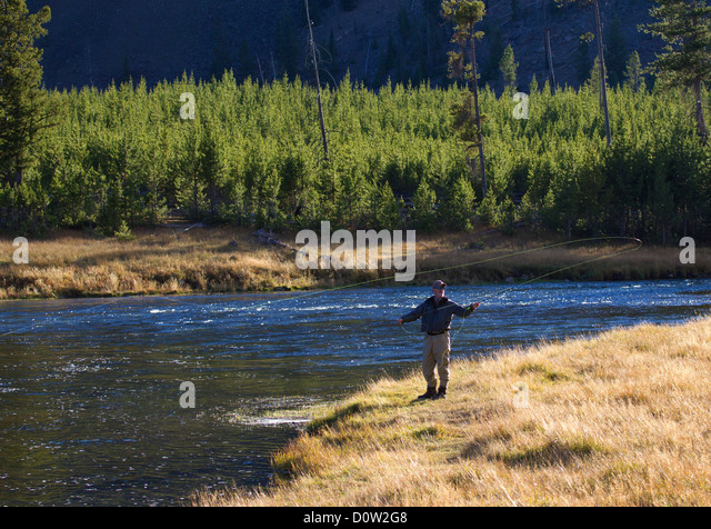 Fly fishing in yellowstone national stock photos fly for Yellowstone fly fishing