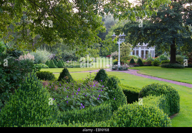 Box hedge plants stock photos box hedge plants stock for Plant in an english hedge crossword clue