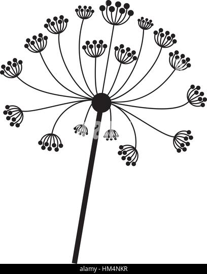 Seamless Silhouette Grass And Flowers Stock Vector