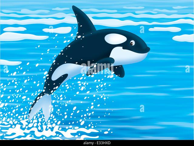White Whale Illustration Stock Photos & White Whale Illustration Stock Images - Alamy