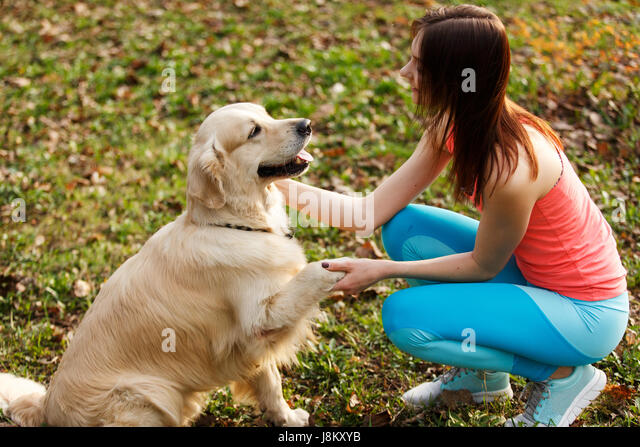 how to give a dog a haircut park stock photos amp park stock images 1863 | dog gives paw to girl j8kxyb