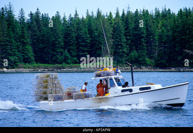 Lobster Maine Trap Sea Stock Photos Lobster Maine Trap