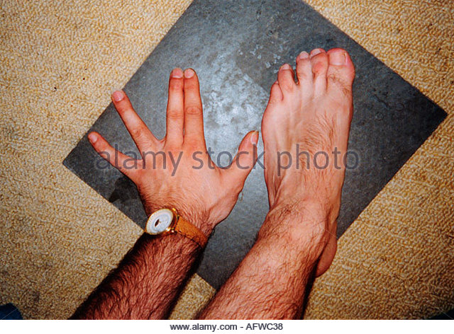 webbed toes stock photos & webbed toes stock images - alamy, Skeleton