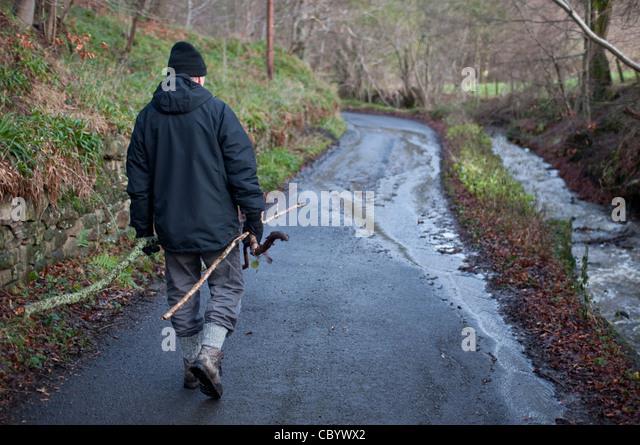 Man Cave Cannock : Walking wood winter uk stock photos