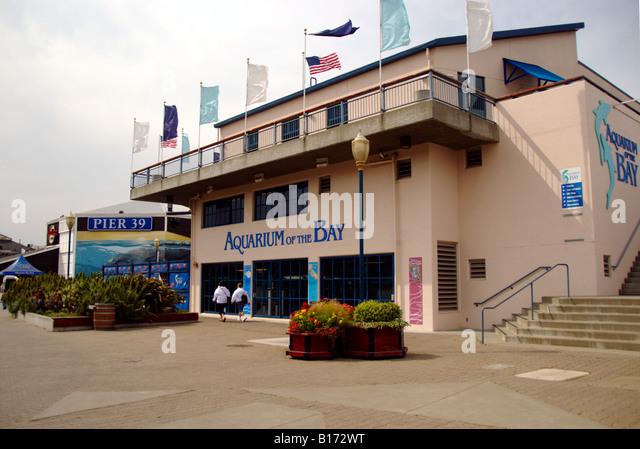 Aquarium Of The Bay San Francisco Stock Photos Aquarium
