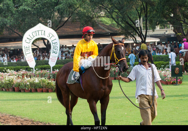how to win in indian horse racing