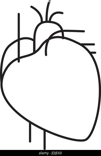 heart valve stock vector images