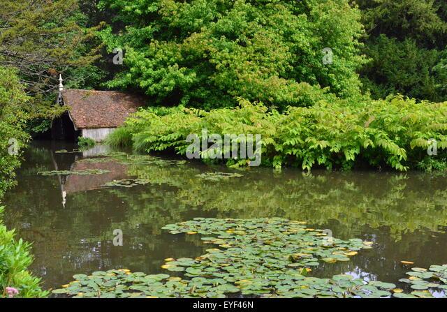 Overgrown garden pond stock photos overgrown garden pond for Garden pond kent