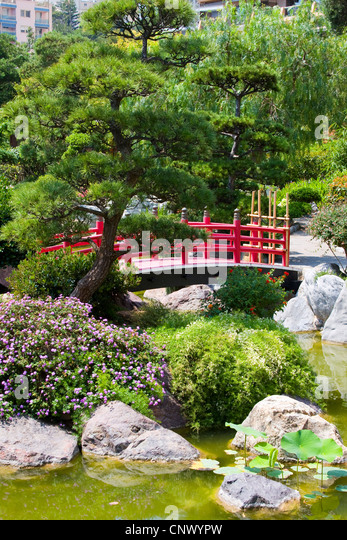 traditional japanese garden with wooden red bridge france monaco stock image - Red Japanese Garden Bridge