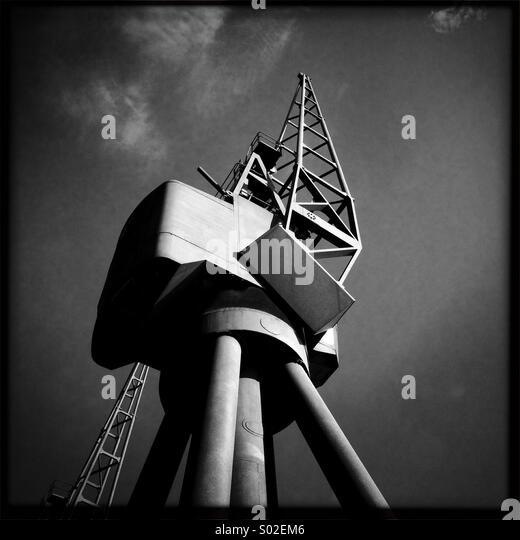 sunlit-crane-s02em6.jpg