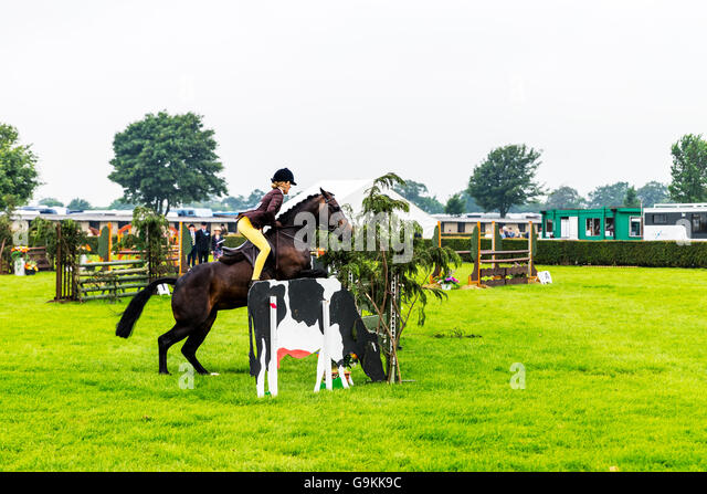 Horse Jumping Stock Photos Amp Horse Jumping Stock Images