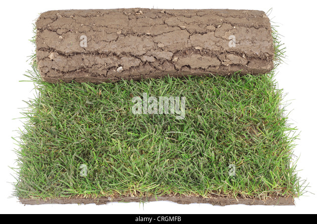 Landscaping Grass Roll : Carpet roll stock photos images alamy