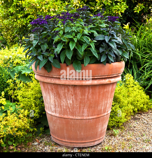 Superior Very Large Terracotta Pot At RHS Hyde Hall Gardens   Stock Image