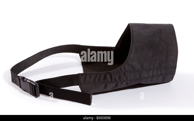 Black Muzzle Stock Photos Amp Black Muzzle Stock Images Alamy