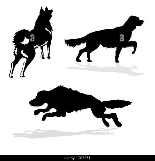 Pointer Dog Vector Stock Photos & Pointer Dog Vector Stock Images ...