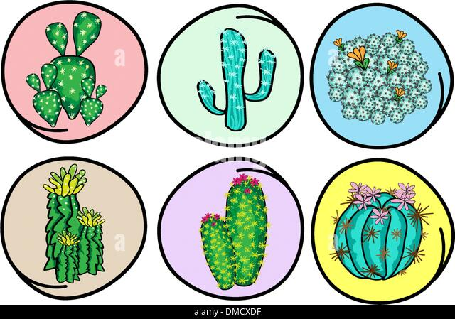 Set of cactus and cactus flowers stock image