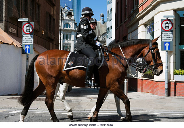 how to become a mounted police officer uk