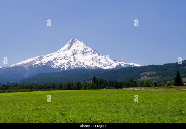 mount hood parkdale mature women personals Beautiful mature want sex - discreet search fuck wife wants hot sex guide rock everything but w4m let's do everything but have sex tonight if things go well, maybe we can go all the way sometime in the near future.