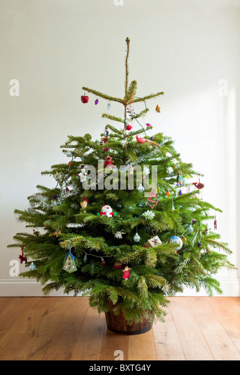 real christmas tree - Real Christmas Tree Decorated