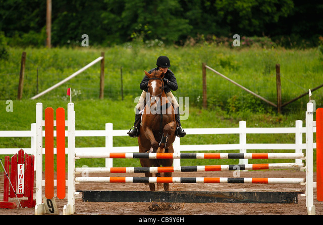 Chestnut Horse Jumping - photo#33