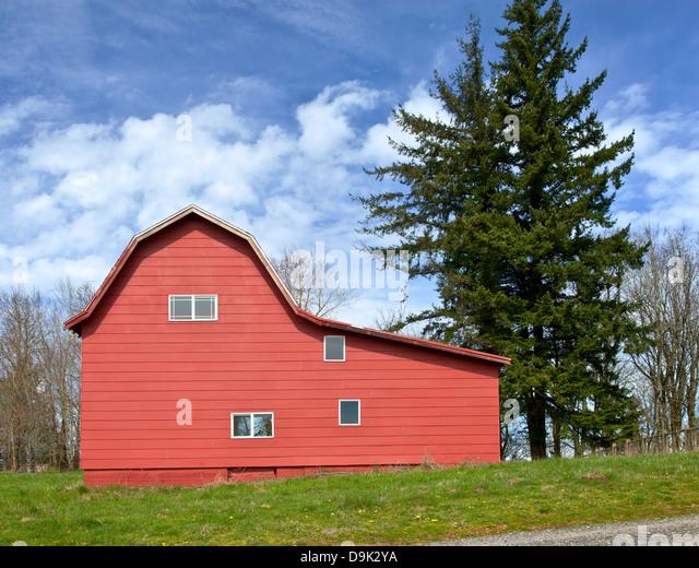 Pine Tree Barn Stock Photos & Pine Tree Barn Stock Images ...