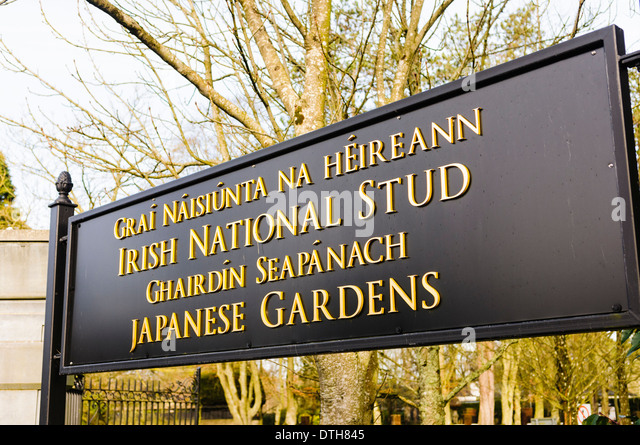 Irish National Stud: National Stud Kildare Stock Photos & National Stud Kildare