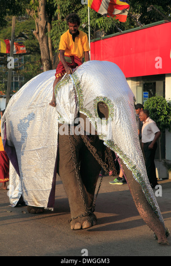 Colombo Sri Lanka Buddhist Stock Photos & Colombo Sri ...