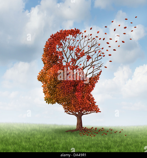 Medical Causes For Memory Loss