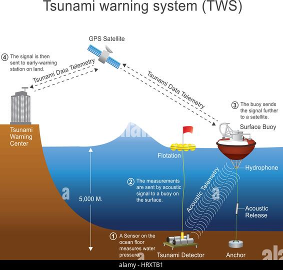 tsunami warning system in mobile A caribbean-wide tsunami warning system was planned to be instituted by the year 2010,  international tsunami warnings delivered to mobile phones.