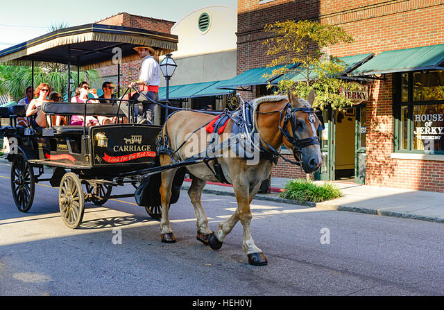 horse drawn trolley stock photos  u0026 horse drawn trolley stock images