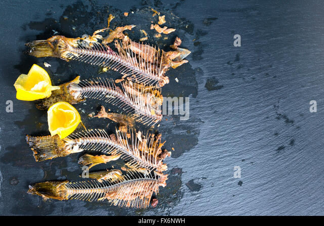 Fish skeleton black stock photos fish skeleton black for Fish without bones
