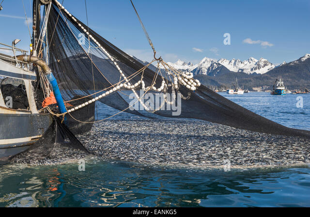 Commercial fishing boat net images for What is commercial fishing