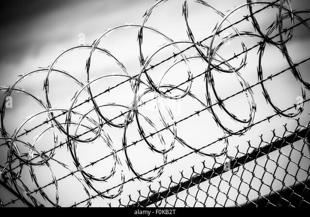 Barbed Wire Fence Prison Fence In Black And White Closeup  Stock Image