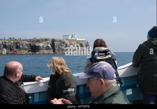 Billy Shiel S Farne Island Boat Tours Seahouses