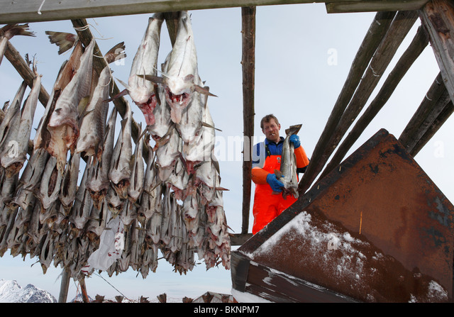Ballstad norway stock photos ballstad norway stock for Salted cod fish near me
