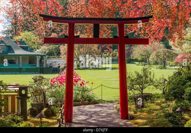Japanese Garden Gate japanese garden torii gate stock photos & japanese garden torii