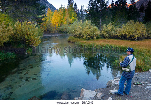 Trout creek canyon stock photos trout creek canyon stock for Bishop ca fishing