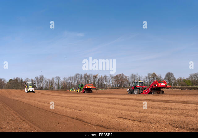 seed and c seedbed preparation To favor an energetic emergence, it is essential that the seedbed is well prepared kuhn offers a wide range of soil preparation tools ranging from tine tools to powers tillers and power.