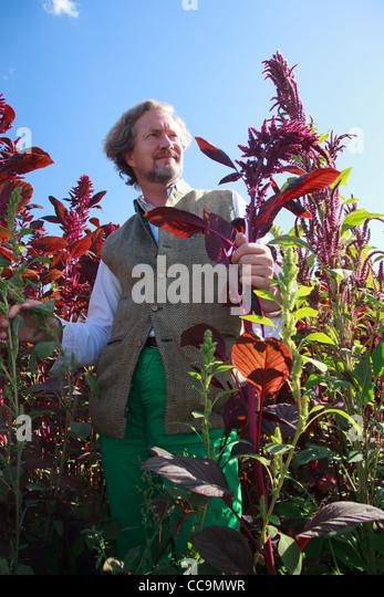 Broglie stock photos broglie stock images alamy - Le prince jardinier ...