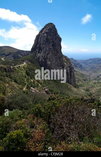 Garajonay Nationalpark La Gomera Canary Islands