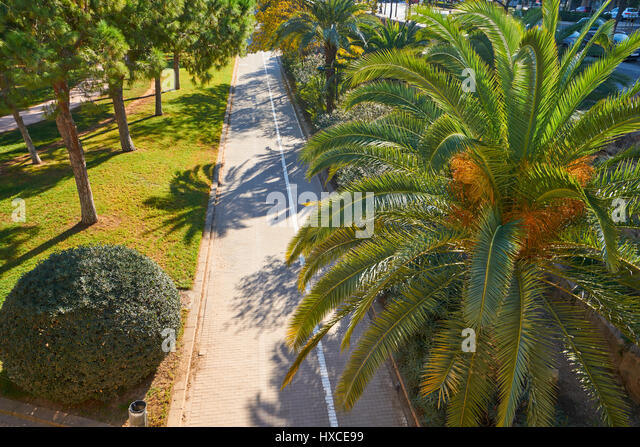 Turia river garden stock photos turia river garden stock for Jardines de turia