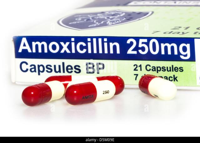 Amoxicillin Amoxil